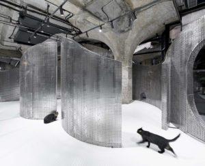 Shanghai: l'ex macello diventa un centro culturale, il design parte dallo studio dell'andatura di un gatto
